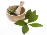 Herbal Remedy Hair Loss
