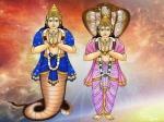 2021 கேது பெயர்ச்சியால் உங்க ராசிக்கு எப்படி இருக்கப் போகுதுன்னு தெரிஞ்சுக்கணுமா?
