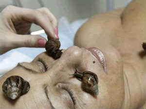 A snail massage can make you young!