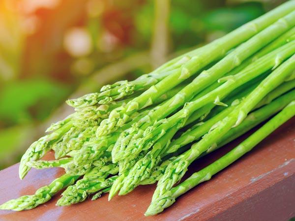 அஸ்பாரகஸ் (Asparagus)