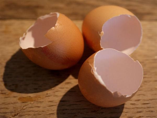 Add egg shell in your skin care tips