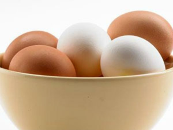 Reasons to intake of egg everyday in your diet