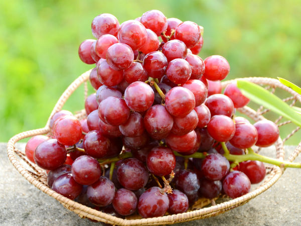 Consuming grapes leads to reduce body fat