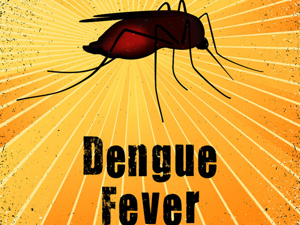 Precautions for dengue fever
