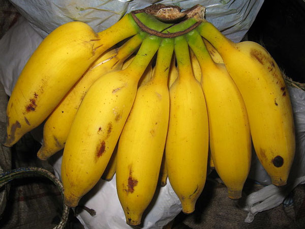 Health benefits of eating banana everyday