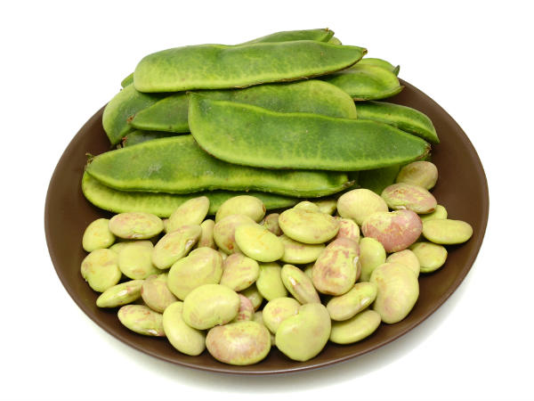 Why should we consume Fava beans frequently