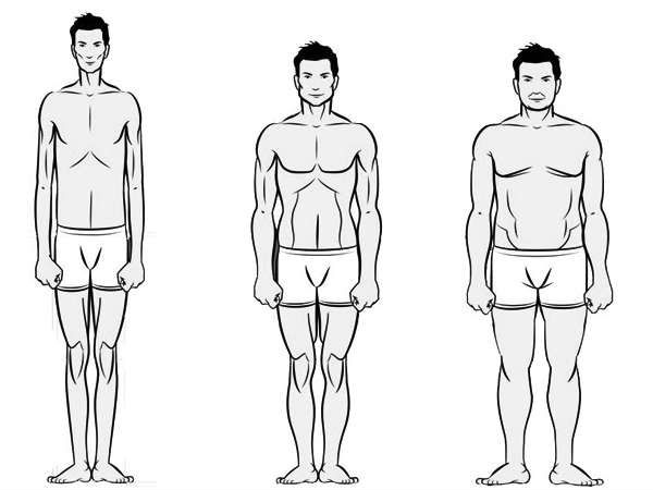 Which Type Of Diet Will Best Suit Your Body Type? Find Out Here!