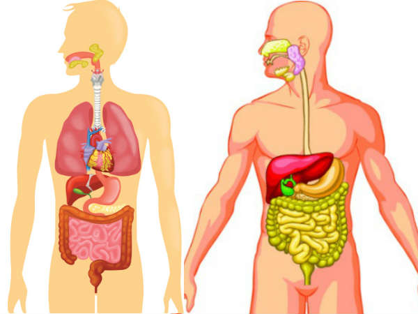 Remedy To Detox Your Body Once A Month & Solve All Health Problems