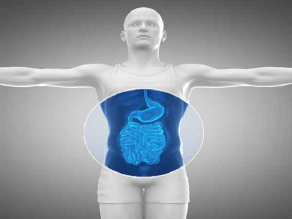 Things You Must Do To Improve Your Gut Health