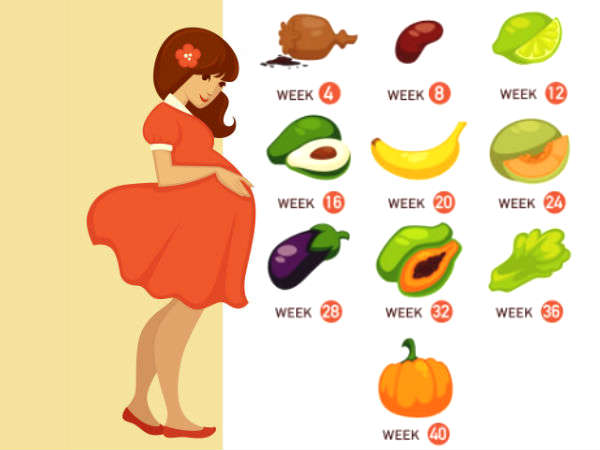 How Big Is Your Baby? The Size Of Your Baby During Various Stages Of Pregnancy