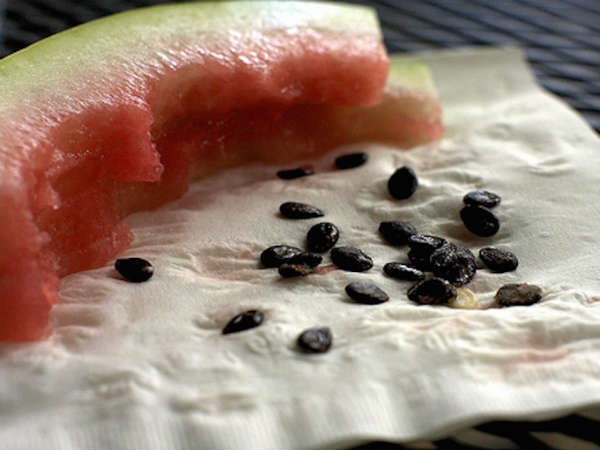 Boil Watermelon Seeds & Drink The Water; The Result Will Shock You!