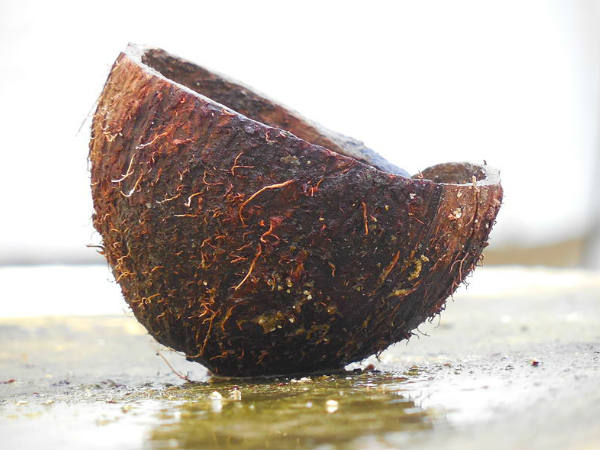 தேங்காய் மூடியை தூக்கி எறியாதீங்க! அதுல இருந்து இயற்கை ஹேர் டை  தயாரிக்கலாம்! | How to get rid of grey hair using coconut shell - Tamil  BoldSky