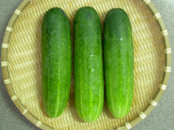 If You Know This, You Will Start Eat Cucumber Everyday!