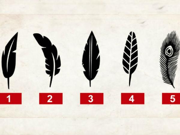 இந்த 5 இறகுல ஒண்ணு சூஸ் பண்ணுங்க? உங்க வாழ்க்கை இரகசியங்கள் நாங்க சொல்றோம்!