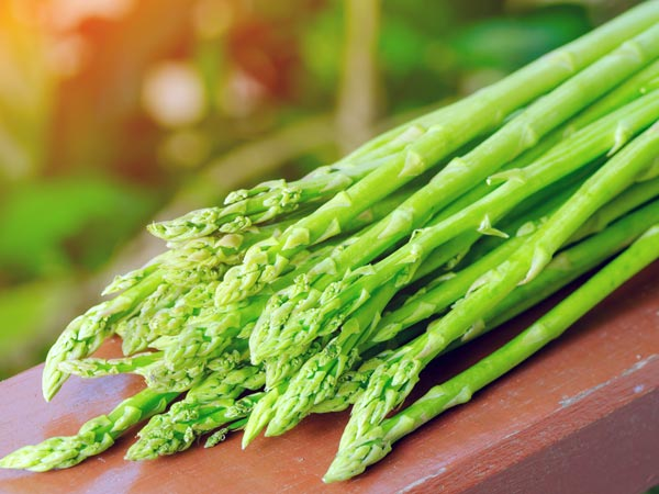 Asparagus roots to stimulate breast feeding