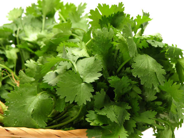 skin care Benefits of coriander leaves