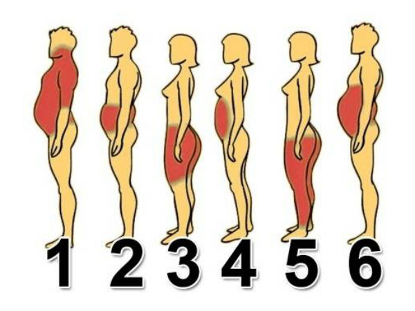 Types Of Body Fat That Everyone Should Know About!