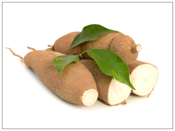 How can Cassava benefits be used in various Industries