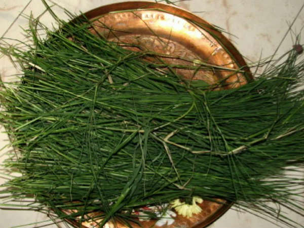 Why we use dried grass while performing pooja according to Hinduism
