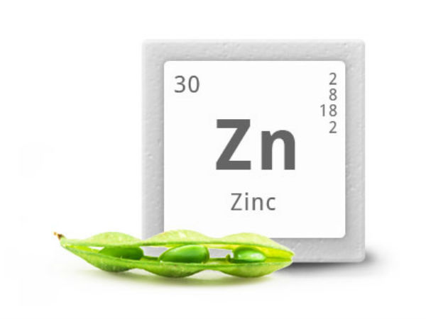 Zinc rich foods prevent formation of cancer cells