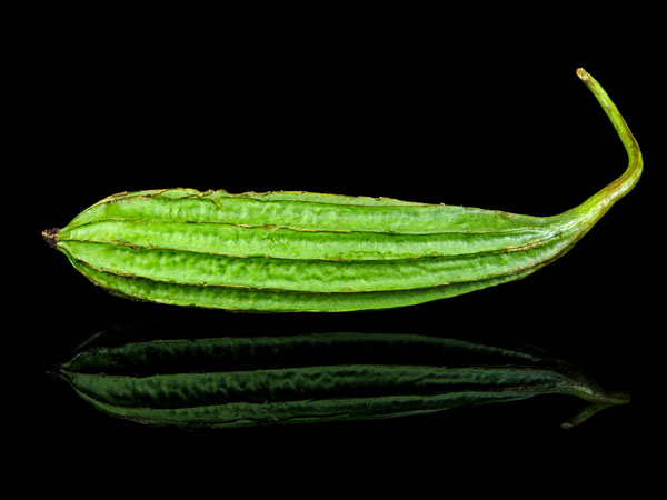 Eating Ribbed gourd regularly helps to fight against diseases