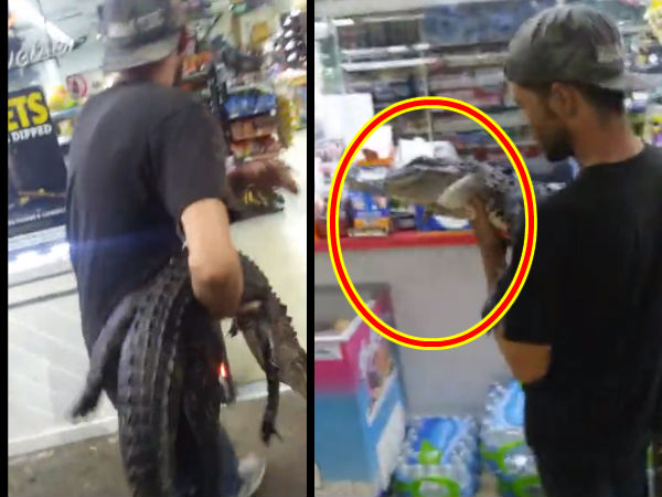 Man Goes Beer Shopping with an Alligator