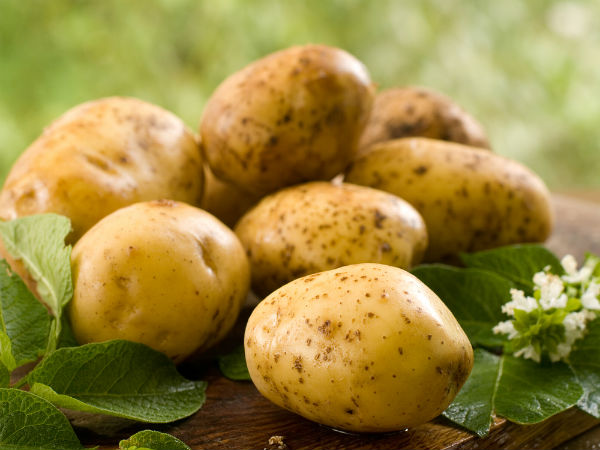 Eat Potatoes During Pregnancy