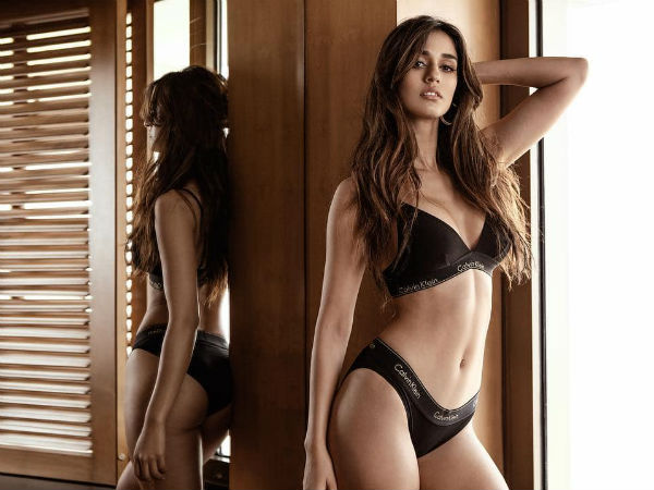 Is Disha Patani Addicted To Show Off Her Curves More in Calvinklein?