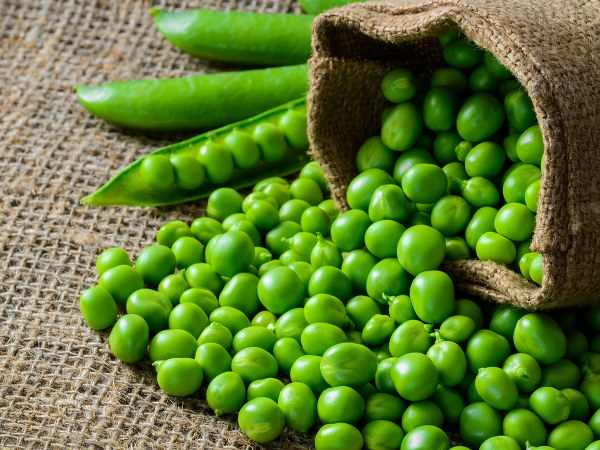 Reasons Why You Must Eat Green Peas This Winter