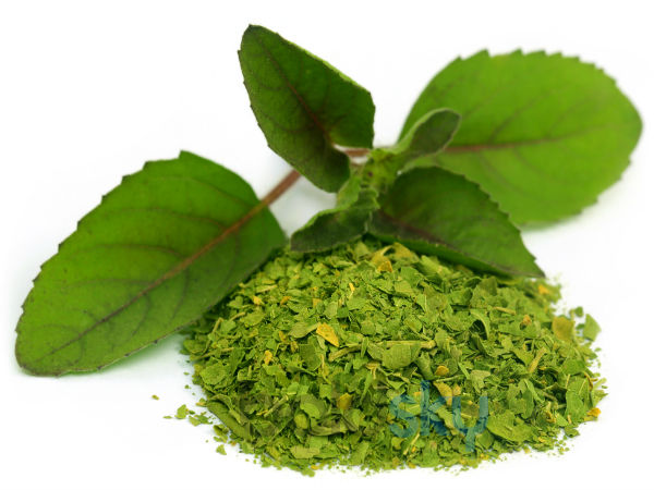 How to add Tulsi in your daily diet to stay healthy
