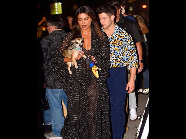 Priyanka and Nick Jonas Flaunt and Wow Us With Dots and Tiger-Patterned Outfits