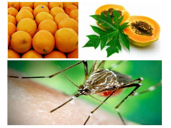 Dengue Fever Prevention: Foods to Eat and Avoid