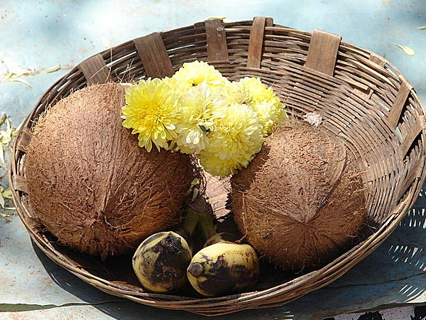 Coconut remedies that can bring wealth and prosperity