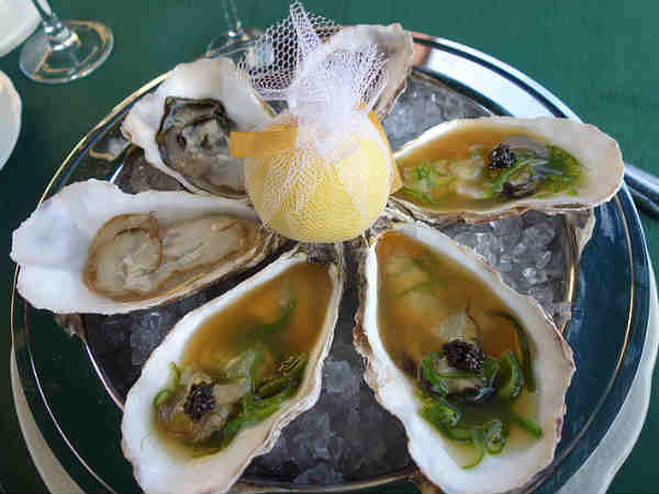 Sea oyster