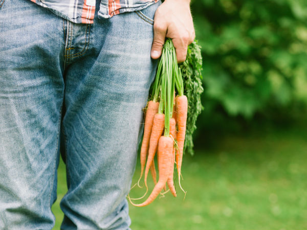 Are Carrots Good For Male Fertility