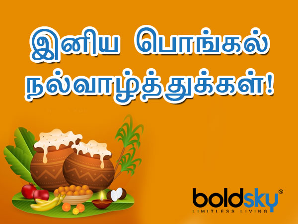 Pongal 2021: Wishes, Messages, Quotes, Greetings, Images, Facebook and Whatsapp status in Tamil