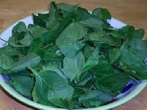 The Benefits Spinach