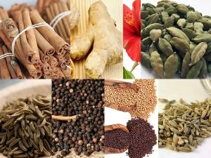 Top 20 Herbs Weight Loss