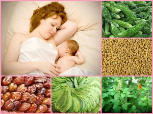 12 Super Foods That Helps Secrete Mothers Milk Naturally