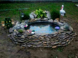 Do You Want Make Pond Your Home