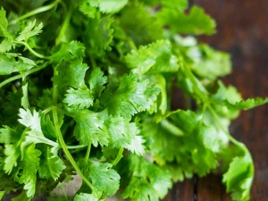 Beauty Benefits Coriander Tamil