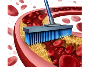 Top Five Foods To Lower Blood Cholesterol
