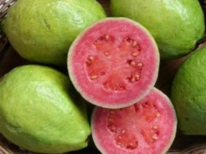 Top Five Health Benefits Of Pink Guava