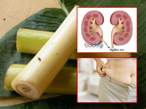 Health Benefits Drinking Banana Stem Juice Twice A Week