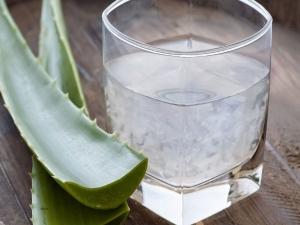 Aloe Vera Face Pack All Skin Type