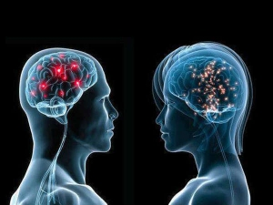 Foods To Prevent Brain Disorders