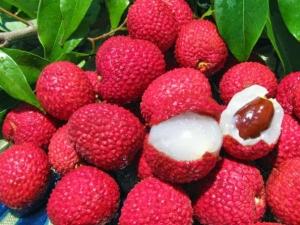 Health Benefits Of Litchi Fruit