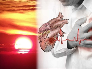 Vitamin D3 Improves Heart Function Study