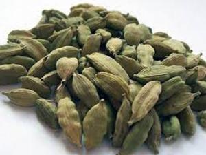 Medicinal Properties Cardamom