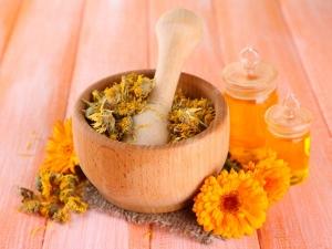 Medicinal Properties Marigold